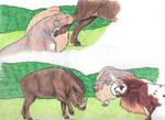 Boar Titles by AthenaMyth