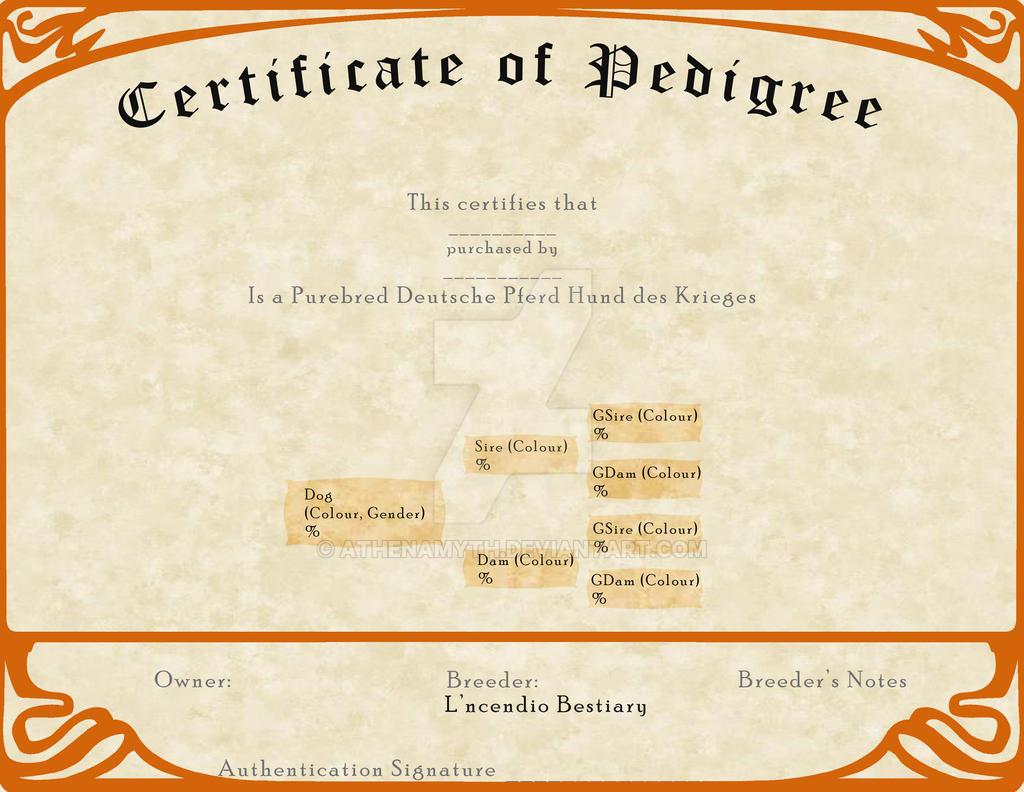 L'ncendio's Breeding Certificate - Krieges