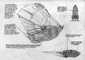 Voliera, starship of the cosmic corsairs
