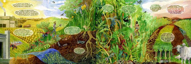 La salute delle piante
