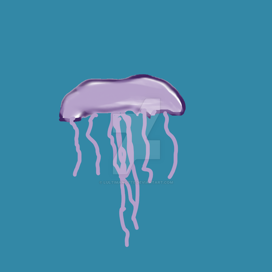 Jellyfish by lultimanotte