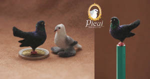 Tiny Pair: Oriental Roller and Saxon Swallow by PicuiDove