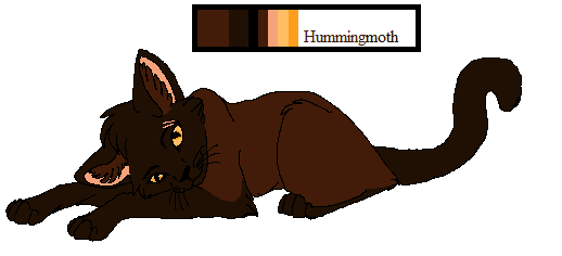 Hummingmoth ref by Gleeful-BarnOwl