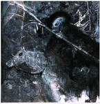 No Boundaries by Blackbirdmotel