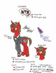 Aces Wild Reference sheet by enderman900