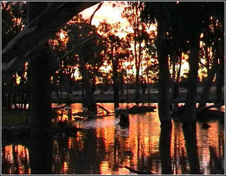 Australia Day Sunset by whedonist