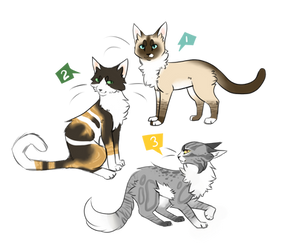 cat adoptables!(CLOSED) by rhydasai
