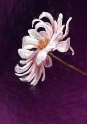 FLOWER - Day 4