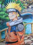 Naruto (2009)
