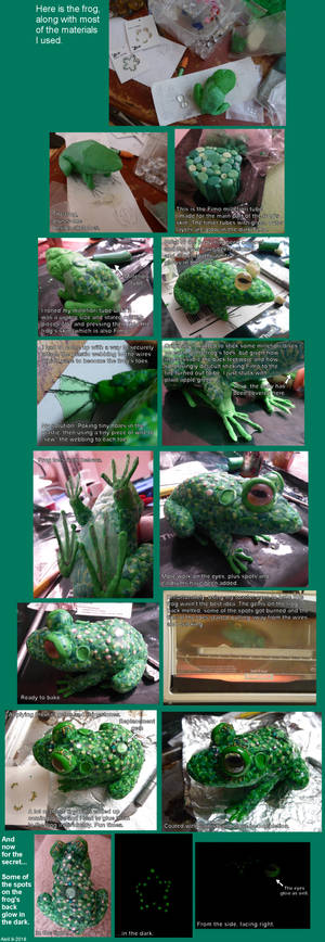 The Making of a Frog