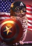 The Owlvengers - Captain Owlmerica