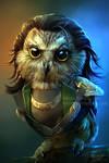 The OWLVENGERS - Owloki