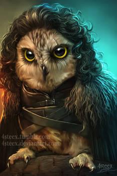 Game of Owls - Jon Snowl