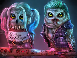 Suicowl Squad - Joker owl and Owly Quinn