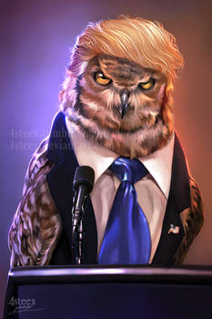 USA elections 2016 - Donowl Trump