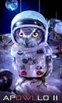 moon landing: APOWLLO 11