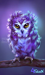 BAD FEATHER DAY Owl