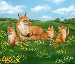 commission: foxes