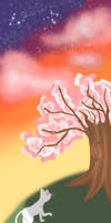 Underneath the Cherry blossom tree