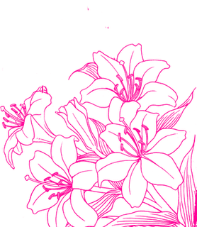 [RESOURCE] Pink Flower by ektamisra