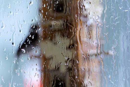 rainy day at the feeder