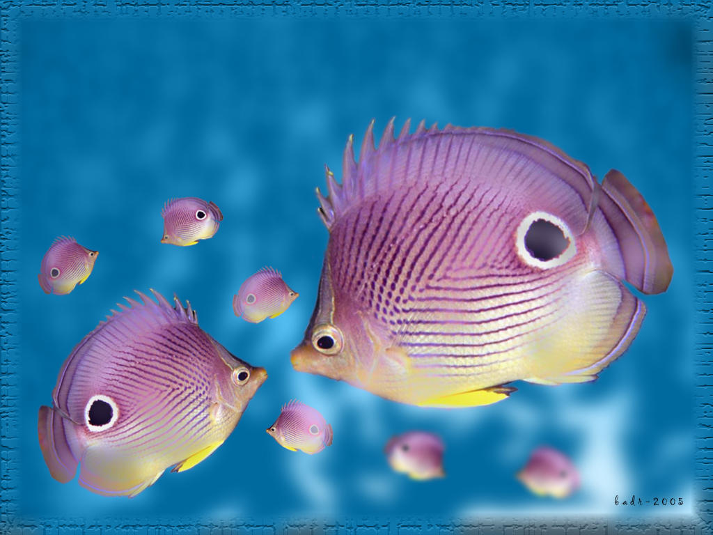 SuperPurple Fish by badr