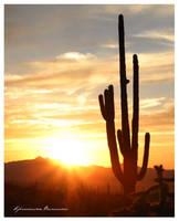 Awesome Arizona by LadyMorella