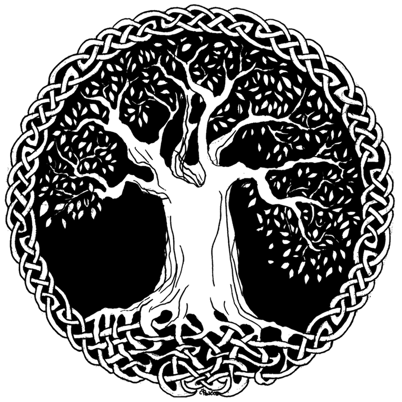 Celtic Tree Of Life Drawings