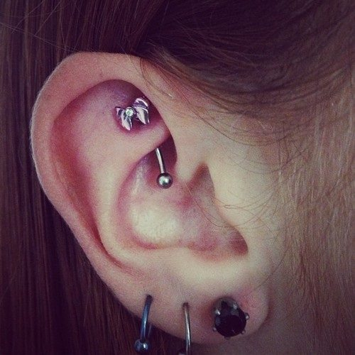 Choose a Captivating Rook Piercing Jewelry and Get by Piercebody