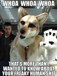 Woah Furry by HyperFireFoxMcCloud