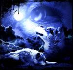 wolfs7