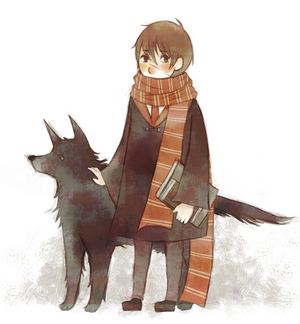 Moony and Padfoot