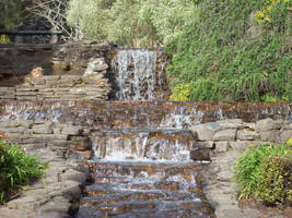 Yatton Park- Tauranga