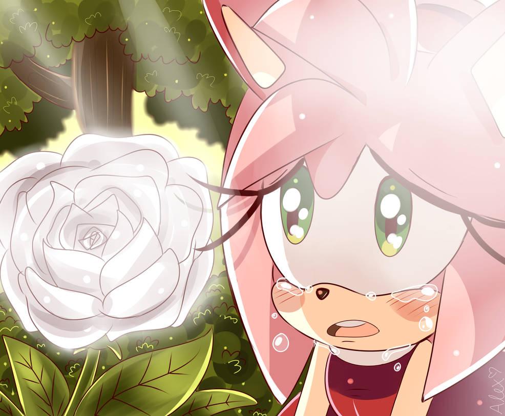 Sonic X: Amy Rose screenshot redraw
