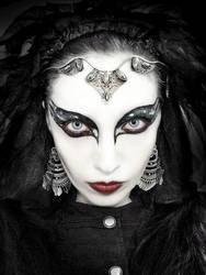 Black Swan by DieHexeFoto