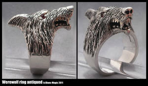 Werewolf ring - antiqued by EagleWingGallery
