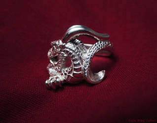 Eastern Dragon Ring by EagleWingGallery
