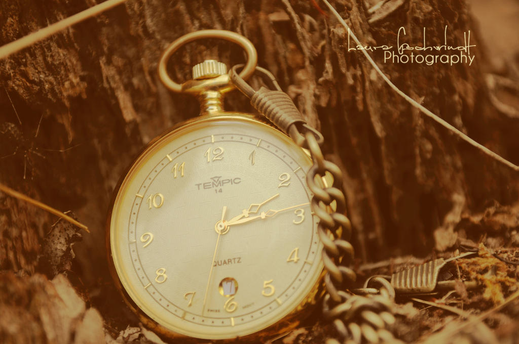 timeless by lovelynaturgraphy