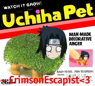 Observalo crecer! Uchiha pet!! Uchiha_Pet_by_CrimsonEscapist