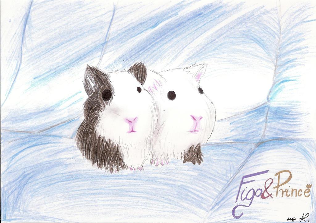 Figo i Prince by Anett98