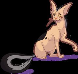 Xigbar cat