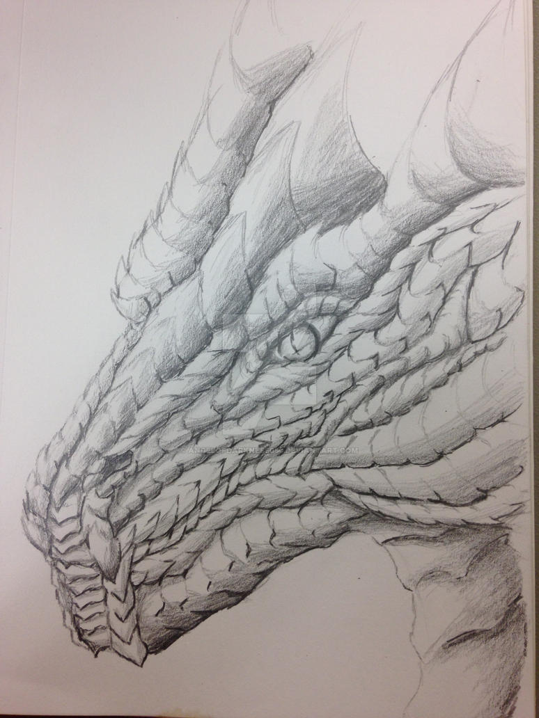 Scaled Dragon Head Practice by AngelOfDarkness050