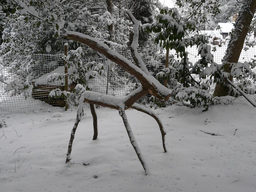 Sculpture in the snow by arbortechuser