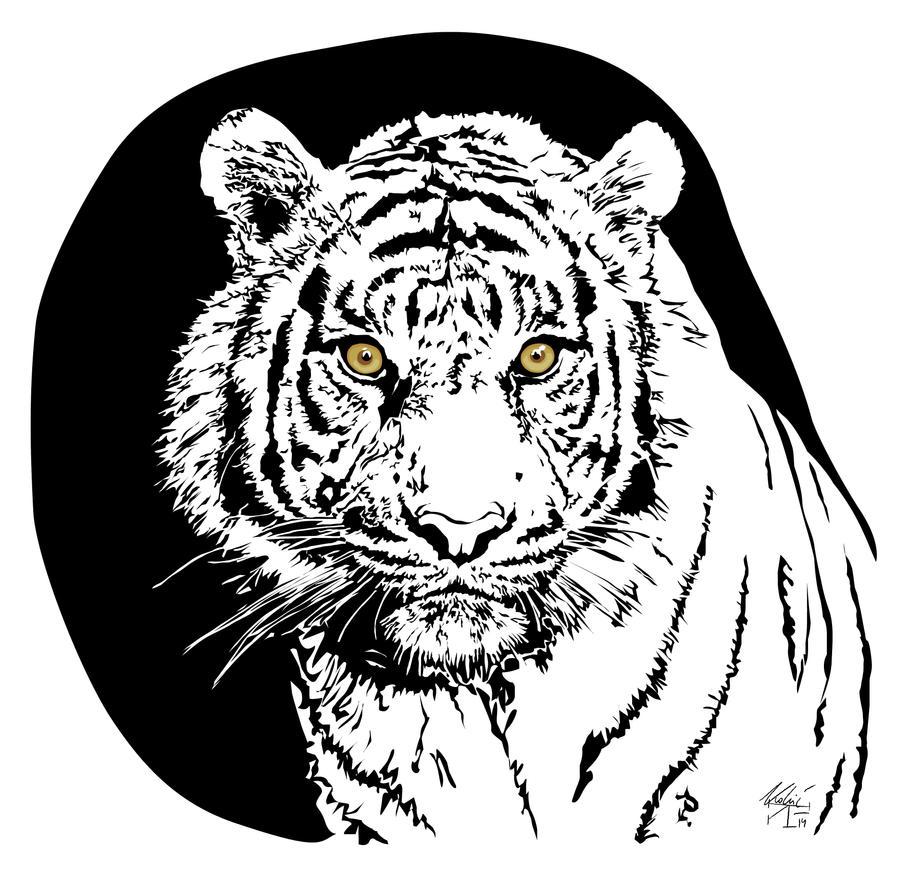 Tiger by Idolum