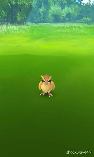 pokemon  by war490