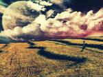 Field Of Golden Dreams