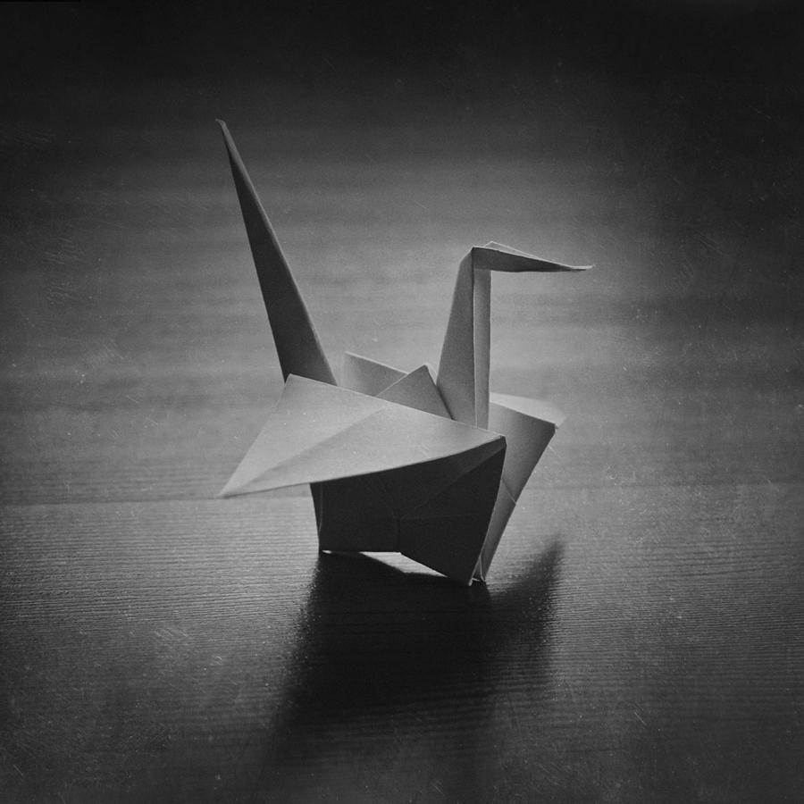 Bird by vanillapearl