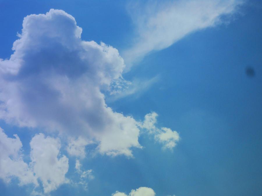 Sky' by June4