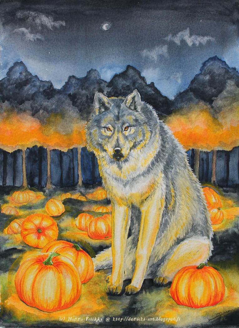 Wolf on the Pumpkin Field by Hanna-Riikka