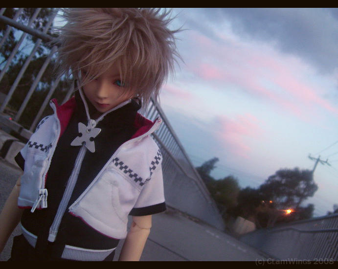 Roxas - Counting the Days